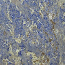 Stone Design - Natural Stone Riviera Blue